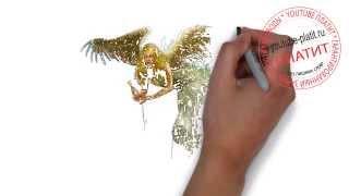 Как правильно рисовать ангела   Как нарисовать ангела для детей поэтапно карандашом(как нарисовать ангела, как нарисовать ангела поэтапно, как нарисовать ангела карандашом, как нарисовать..., 2014-07-31T03:46:25.000Z)