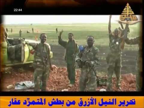 الجيش السوداني يحرر الدمازين من براثن عقار