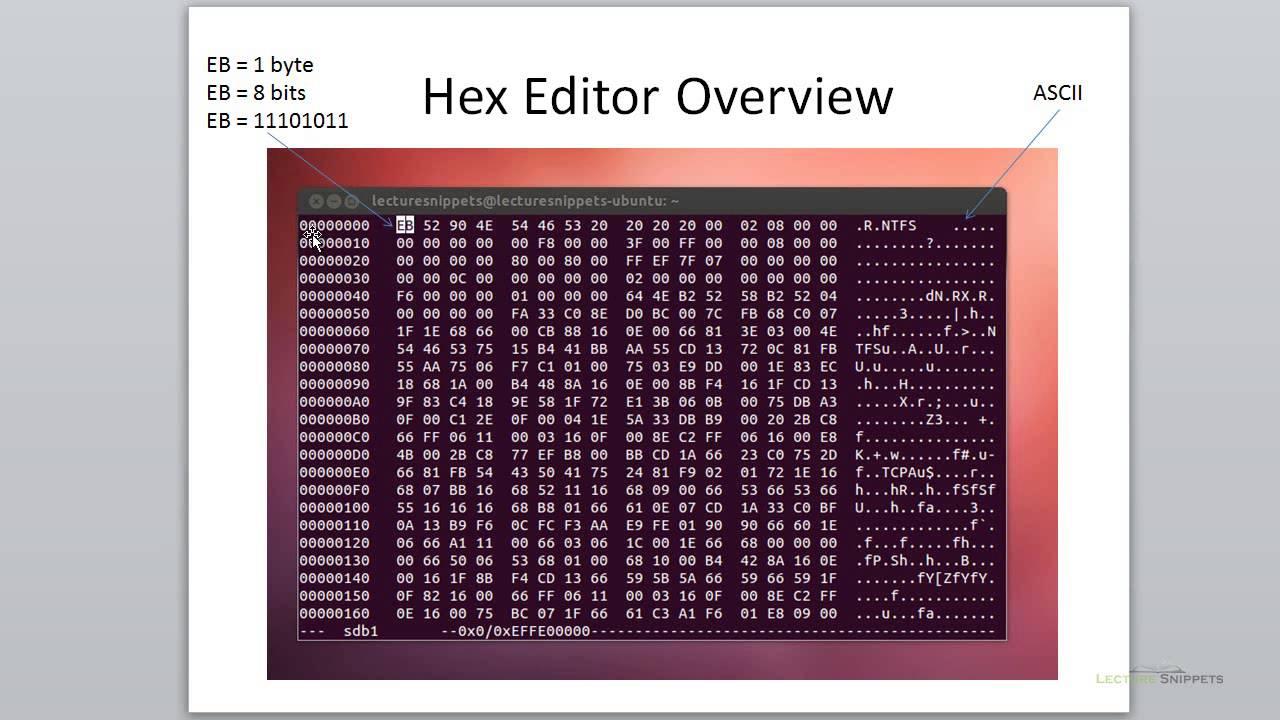 Ubuntu 12 04 Forensics - Hex Editor Overview