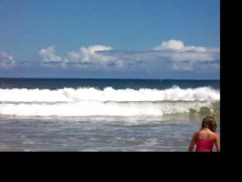 Hawaii 2004 100 0685