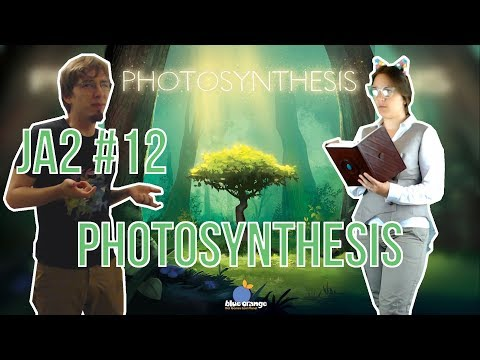 Des jeux à deux ep 12 : Photosynthesis