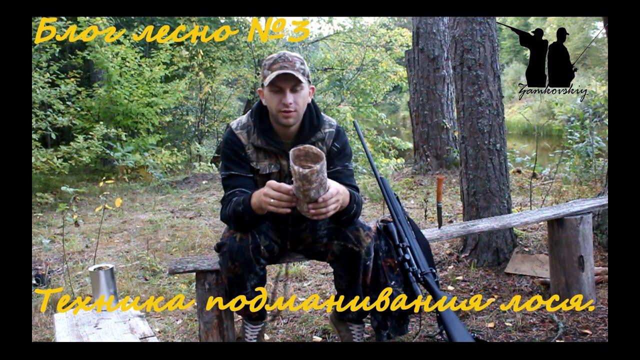 Блог лесной №3. Техника подманивания лосей во время гона.