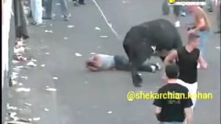 Быки забивают человека, жесть в Испании, ржака, прикол