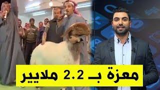 كويتي يشتري معزة بأكثر من 131 ألف دولار