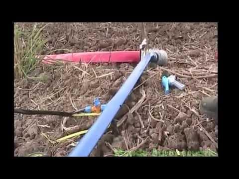 Sistema de riego por goteo youtube - Tubo riego por goteo ...