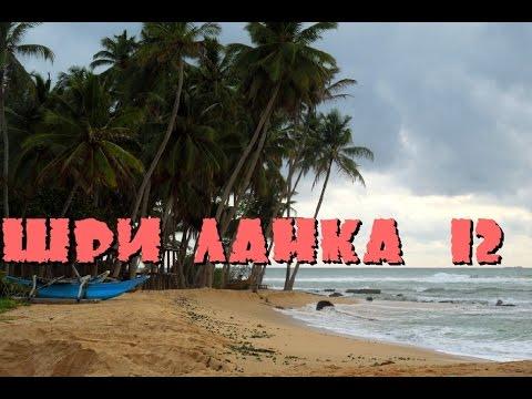 Шри-Ланка 12: Рынок,
