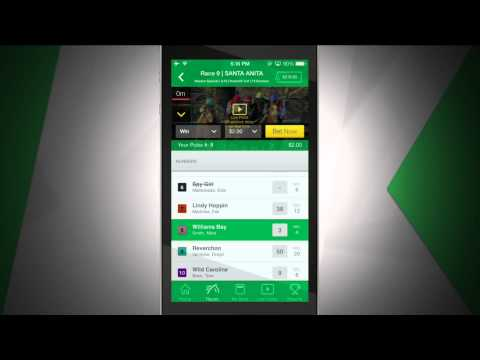 Dave Weaver Bets with his TVG App