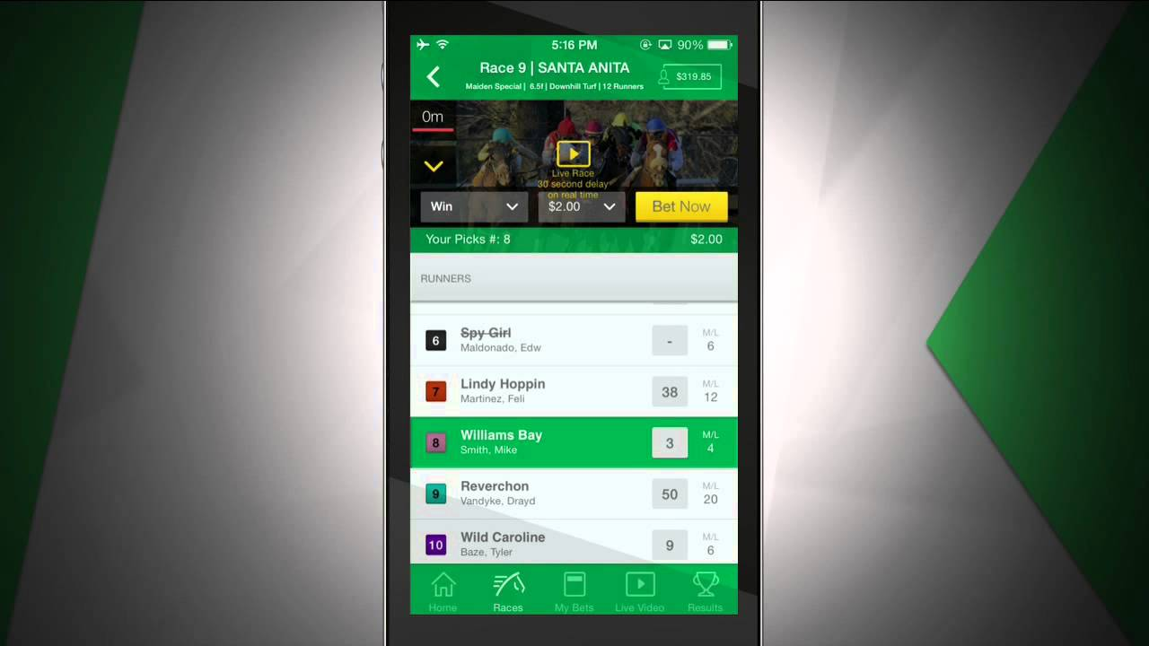 how to place a box bet on tvg