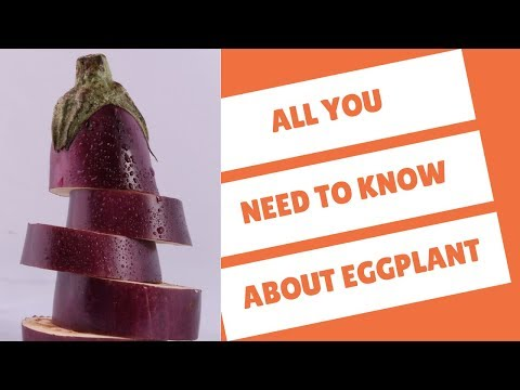 What Does Eggplant Taste Like? (Find out This and More!)