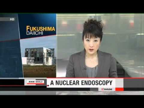 Fukushima Endoscopy & Criminal Conduct update 12/27/11
