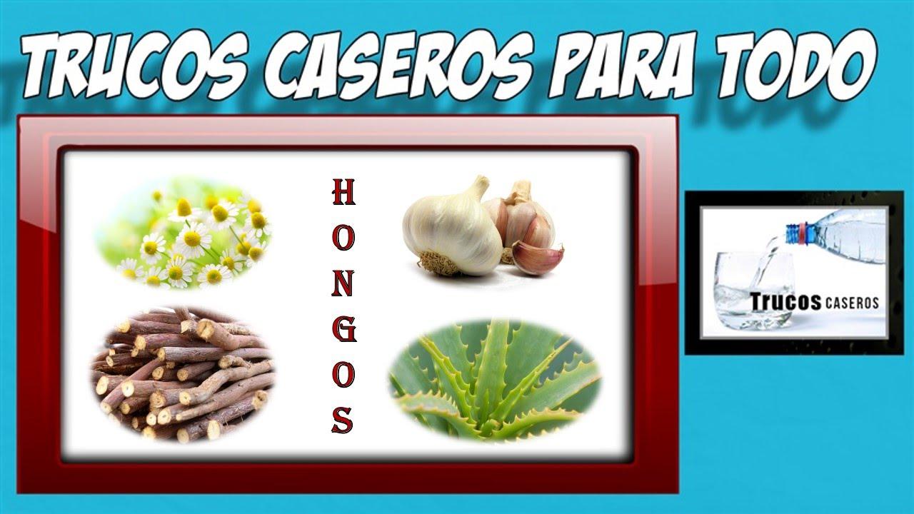 Las mejores hierbas para los hongos en la piel remedios - Como quitar hongos de la pared ...