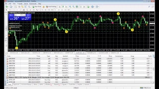Trade forex Online investing 100 USD Day 3