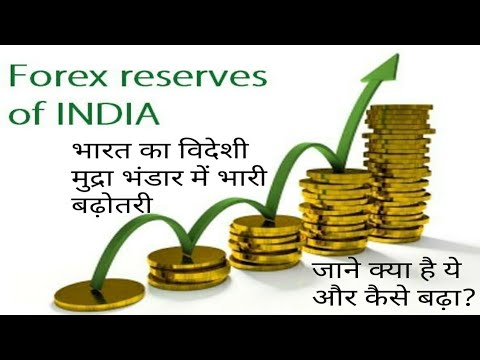 Foreign exchange reserves in india |  भारतीय विदेशी मुद्रा भंडार 401 अरब डॉलर | what is FER in hindi