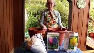 Gardening with Peg | Potting Bulbs