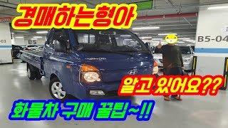 【1톤 중고차】 자동차경매 경매사가 알려주는 1톤 트럭 , 1톤 화물차 구입하는 핵꿀팁~!