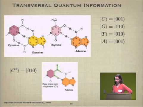 Classical and Quantum Information in DNA (Google Workshop on