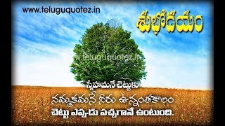 good morning best wishes and quotes in telugu / Good morning messages and best quotations in telugu