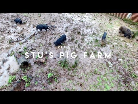 Josh & Mearle: VLOG 10 - Stu's Pig Farm (Part 2)