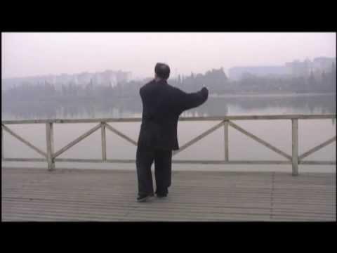 Tai Chi form Yang 115-Liu Xin Lu