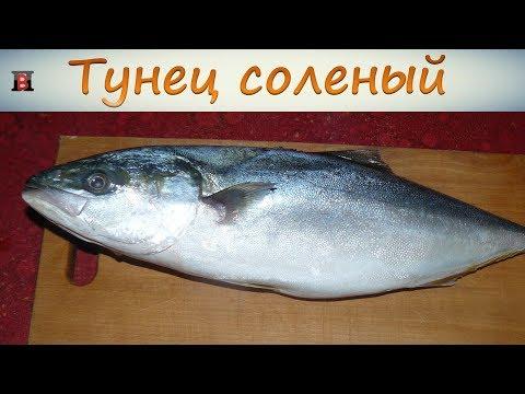Засолить тунца в домашних условиях рецепт