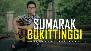 Download Mp3 Sumarak Bukittinggi - Cover David Iztambul