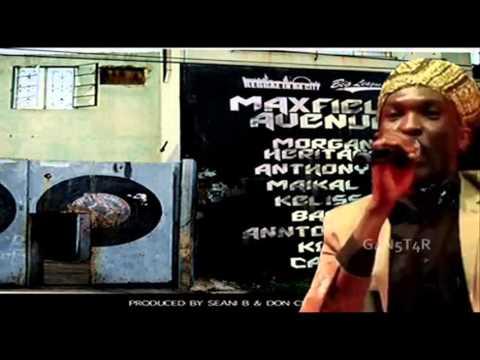 Anthony B - Build Back The Vibes - Maxfield Avenue Riddim - Seani B & Don Chandler Prod - May 2014