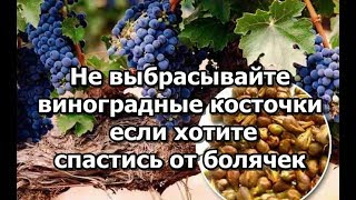 Эликсир молодости.  Не выбрасывайте виноградные косточки если хотите спастись от болячек