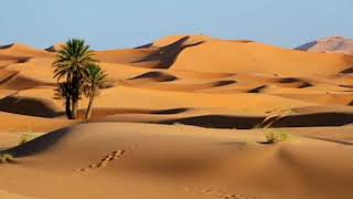 Two Christians lost in a desert ( funny Story) || মজার গল্প