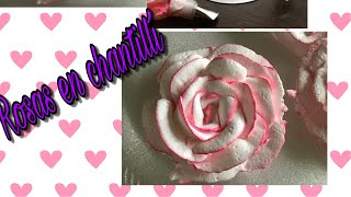 ROSAS DE CHANTILLY | CURSOS ONLINE GRATIS