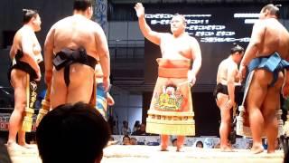 平成29年4月30日(日)、幕張メッセで行われた大相撲超会議場所に行ってき...