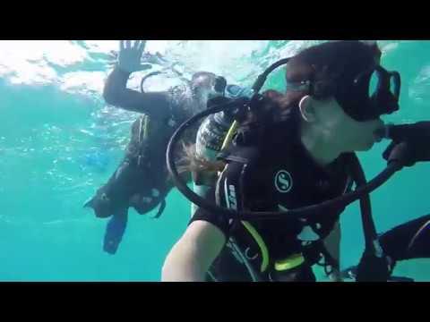 Red Sea -ISRAEL  ! Diving In Eilat !