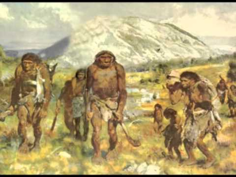 Cultural evolution: broad outline of prehistoric cultures (General introduction to anthropology)