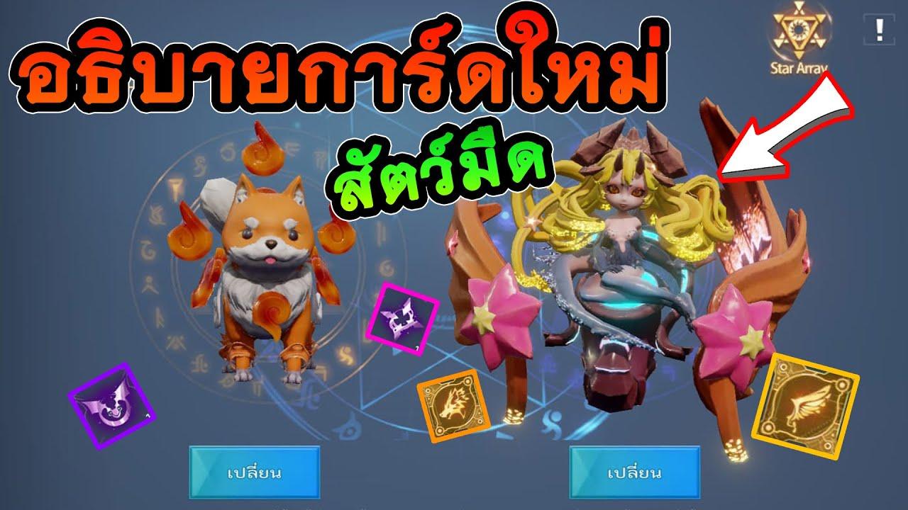 Dragon Raja : อธิบายการ์ดและชิบสัตว์เลี้ยงใหม่