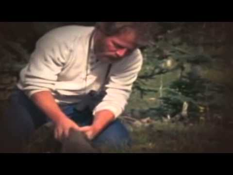 Wild America 03x09   Fishers in the Family 2