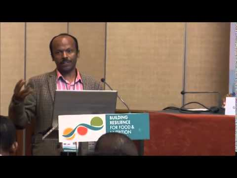 Side Event - Degnet Abebaw on Weather Insurance in Ethiopia