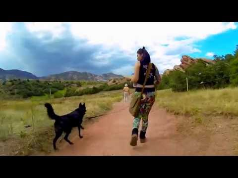 Hiking w/ a Wolfdog - South Valley #03