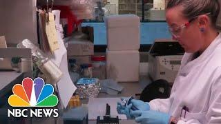 Watch Full Coronavirus Coverage - April 29 | NBC News Now (Live Stream)