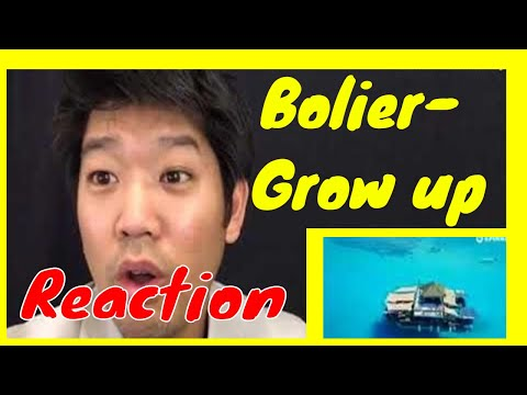 Bolier - Grow Up (Official Music Video) –Reaction