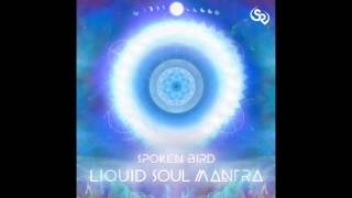 Spoken Bird - Moment of Clarity