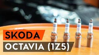 Hoe Achteraslager vervangen SKODA OCTAVIA Combi (1Z5) - video gratis online