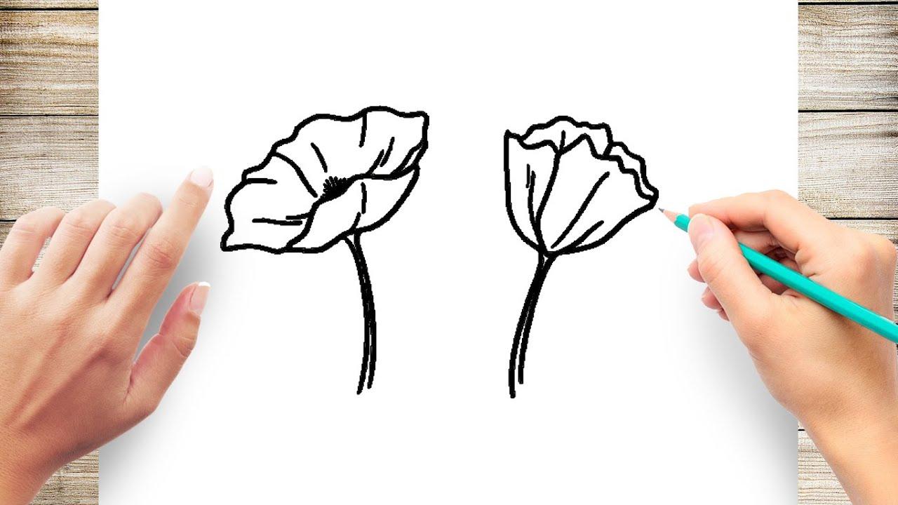 How To Draw Poppy Flower Easy Youtube