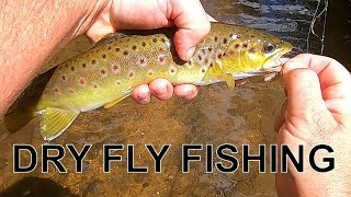 Dry Fly fishing for brown trout