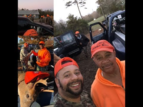 Deer Hunting With Dogs 2018 Buck Down