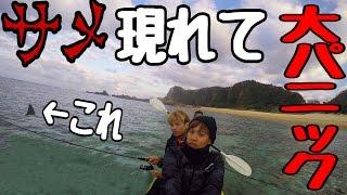 カヤック釣りしてたらサメ2匹現れてパニック【サバイバル生活】 1話 thumbnail