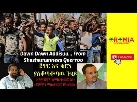 Oromo news hiriiraa qeeroon bakkaa addaa addattii gageesamee