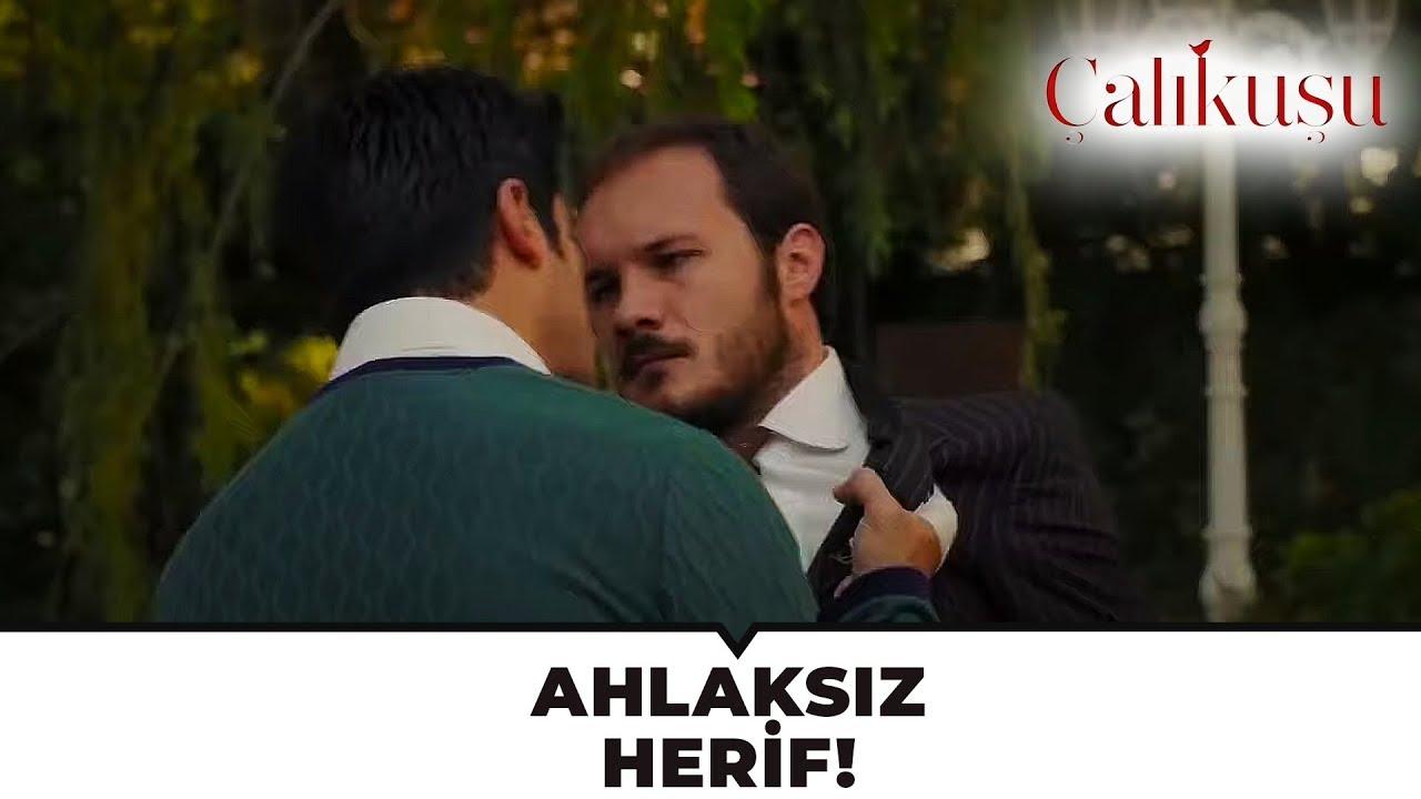 Repeat Kamran, Selim ve Necmiye'yi Bastı