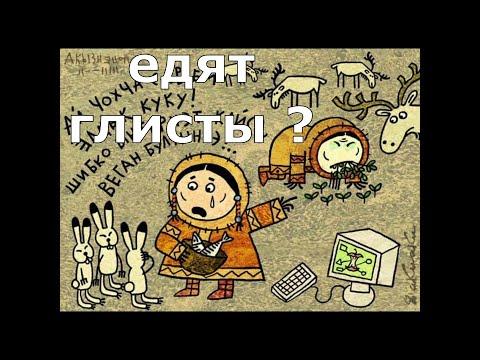 в Якутии едят глисты