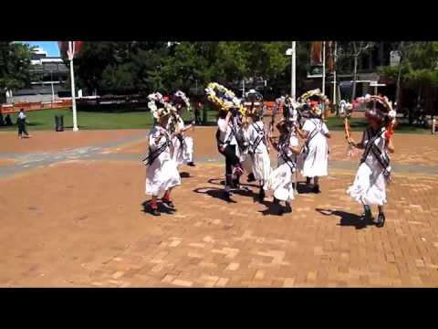 New Zealand Morris Tour in Hamilton
