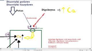 Glikozydy naparstnicy   digoksyna, digitoksyna  W  NIEWYDOLNOSCI SERCA
