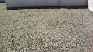 видео Щебень гранитный 5-20 (50кг)
